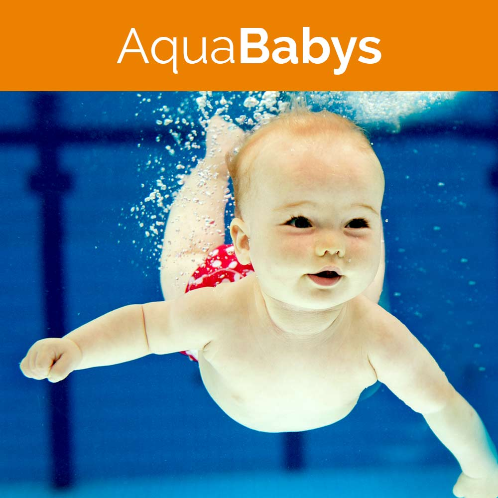 Home, AquaBabys, Aquasport, Schwimmer, Auqasport, Wasserkurse